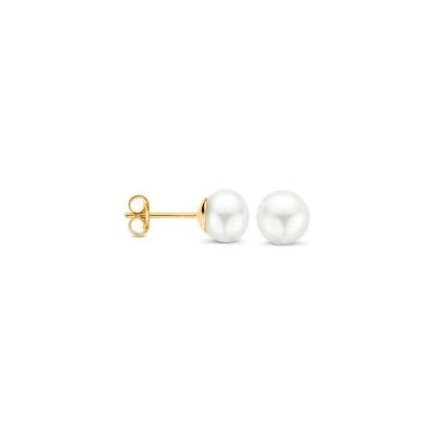 Blush 14 Karaat Gouden Oorbellen 7137YPW