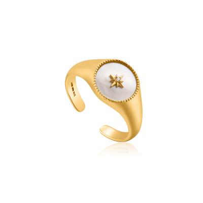 Ania Haie 925 Sterling Zilveren Goudkleurige Hidden Gem Adjustable Ring AH-R022-01G