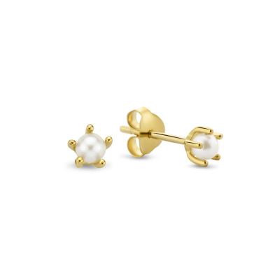 Violet Hamden Pearl Drop 925 Sterling Zilveren Goudkleurige Oorstekers VH03010